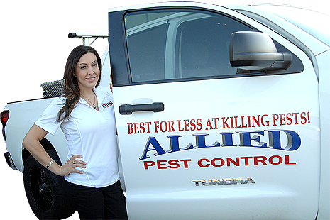 Allied Pest Control Norco, CA